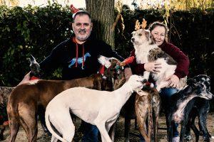 Joyeux Noël - Frohe Weihnachten
